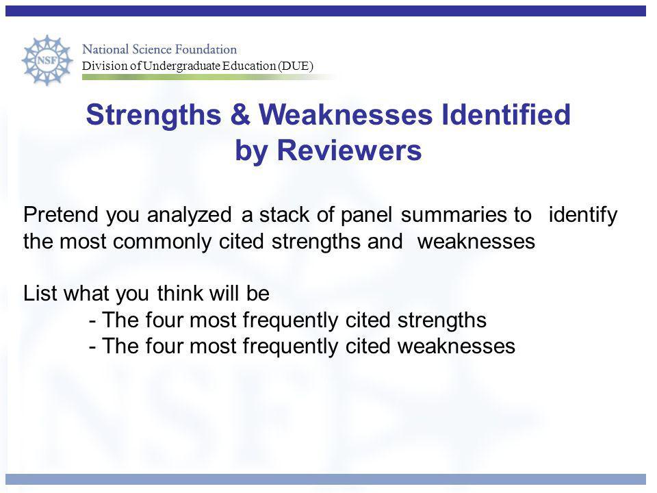 Strengths & Weaknesses Identified