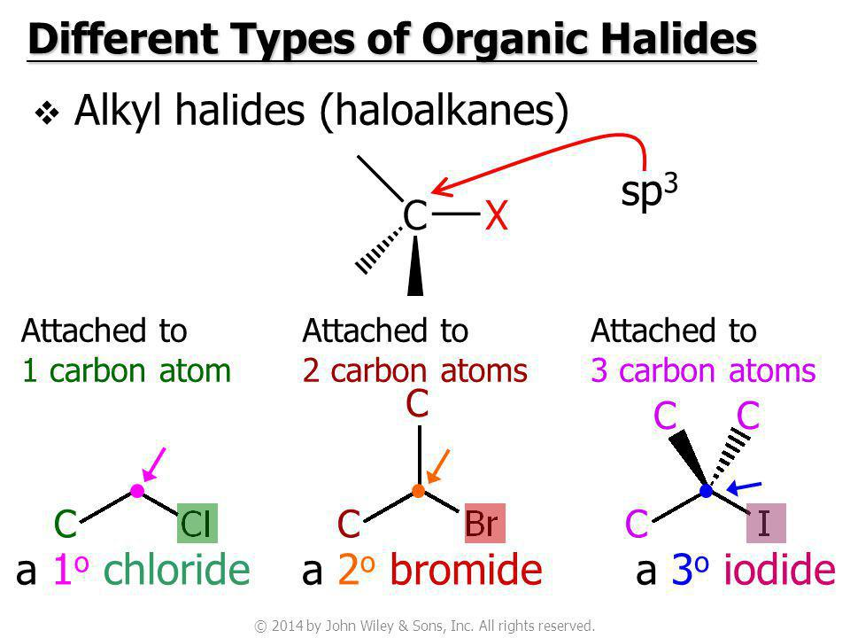 Different Types of Organic Halides