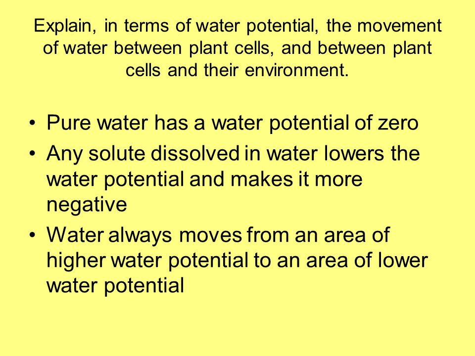 Pure water has a water potential of zero