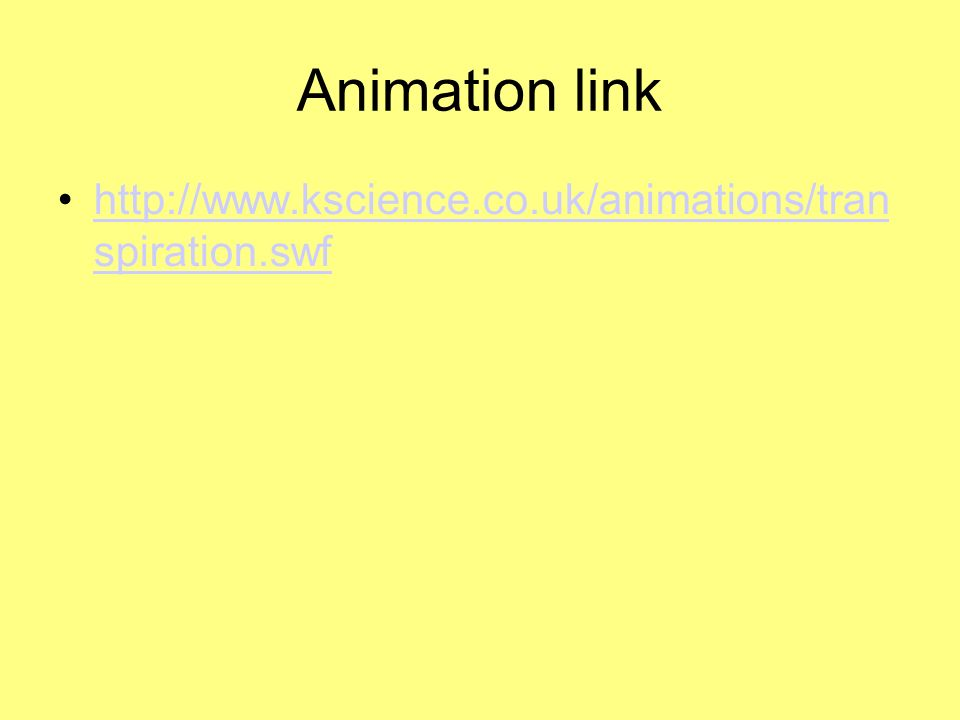 Animation link http://www.kscience.co.uk/animations/tran spiration.swf