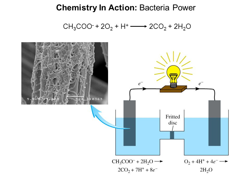 Chemistry In Action: Bacteria Power