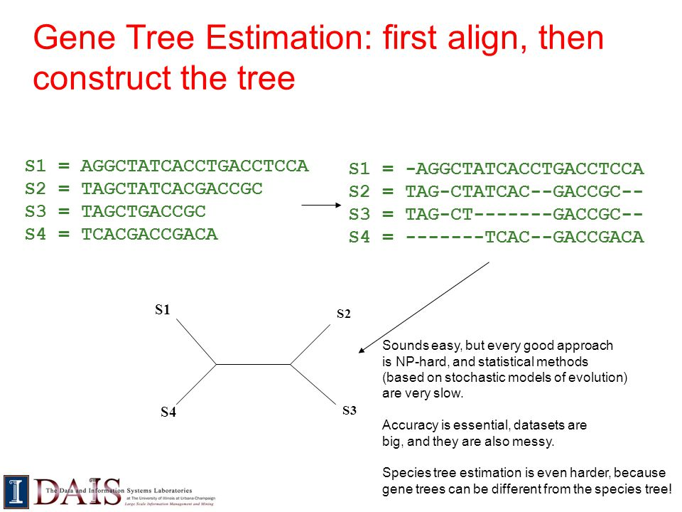 Gene Tree Estimation: first align, then construct the tree