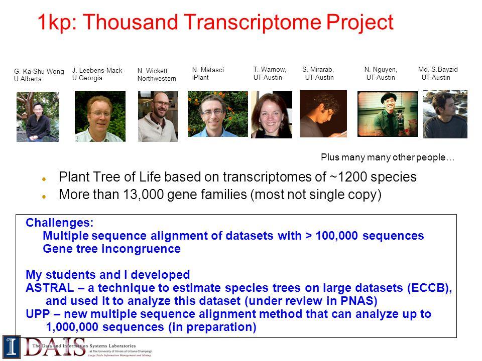 1kp: Thousand Transcriptome Project