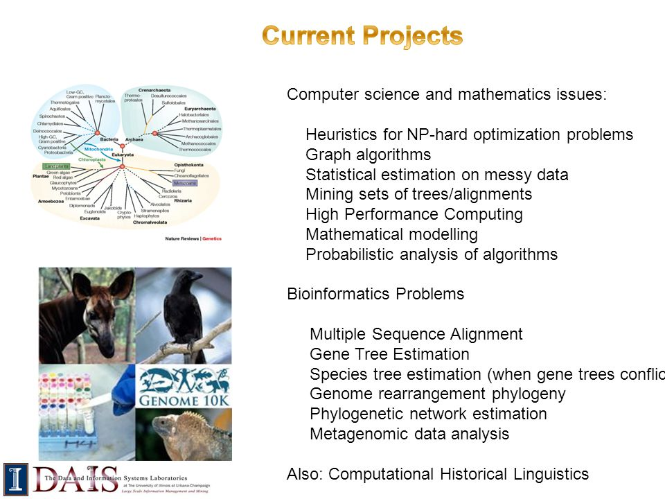 Current Projects Computer science and mathematics issues: