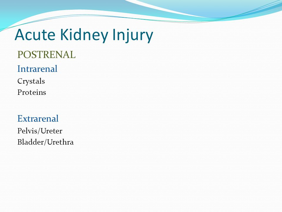 Acute Kidney Injury POSTRENAL Intrarenal Extrarenal Crystals Proteins
