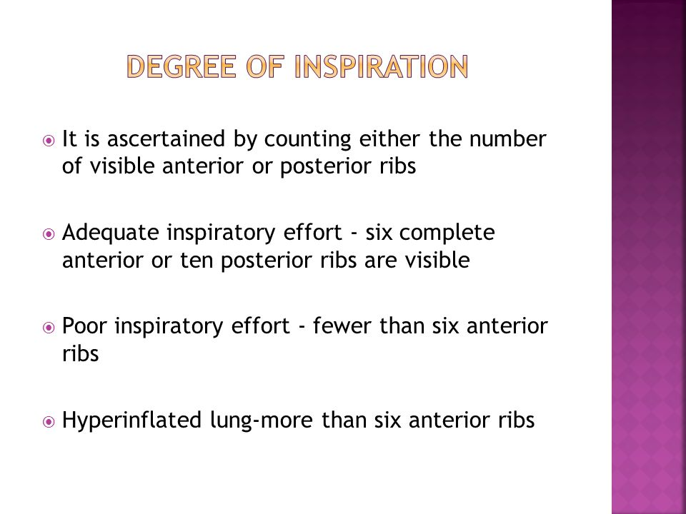 DEGREE OF INSPIRATION It is ascertained by counting either the number of visible anterior or posterior ribs.