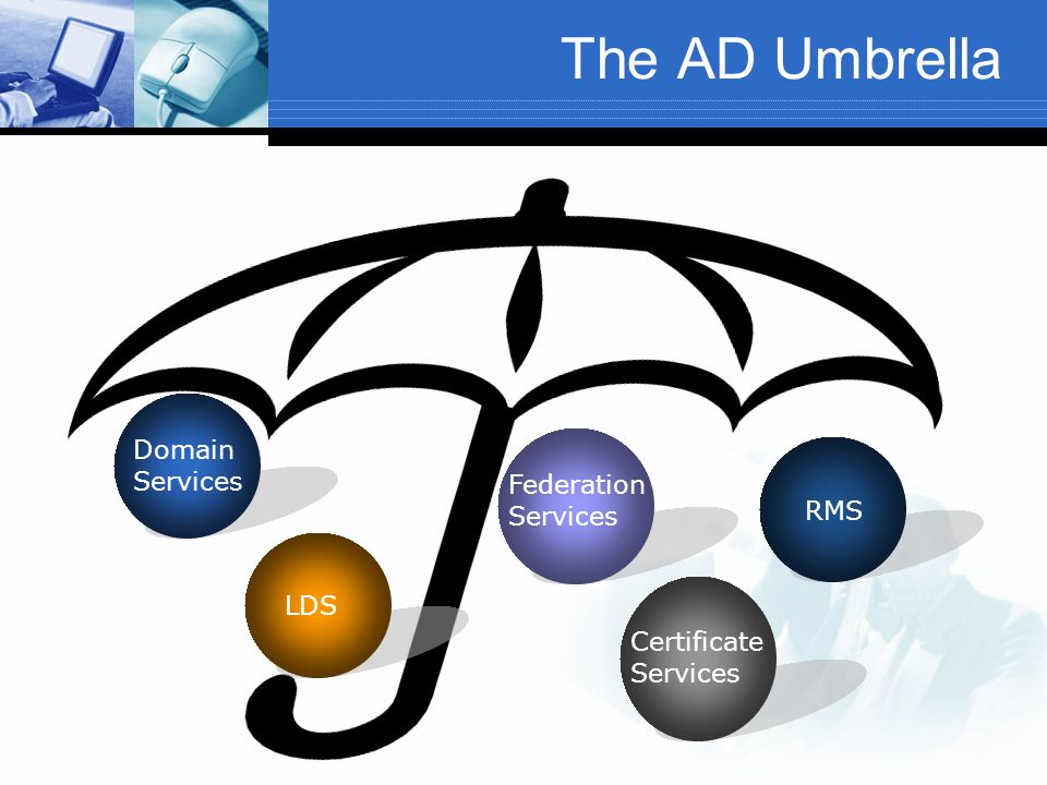 The AD Umbrella Domain Services Federation Services RMS LDS