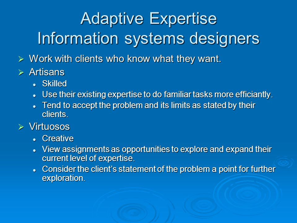 Adaptive Expertise Information systems designers