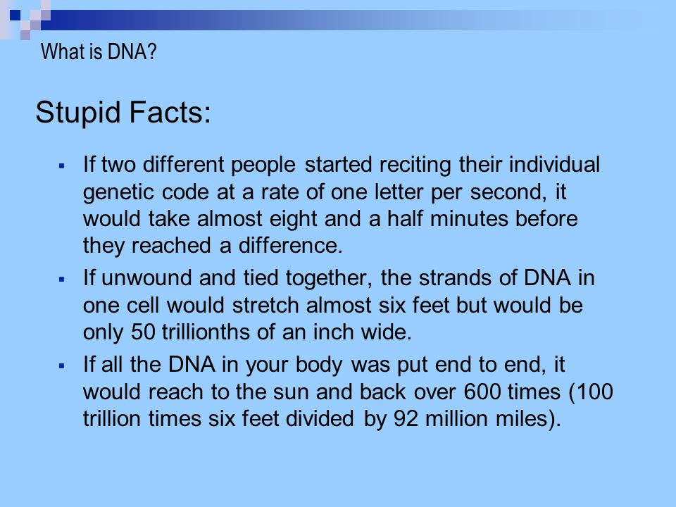 Stupid Facts: What is DNA