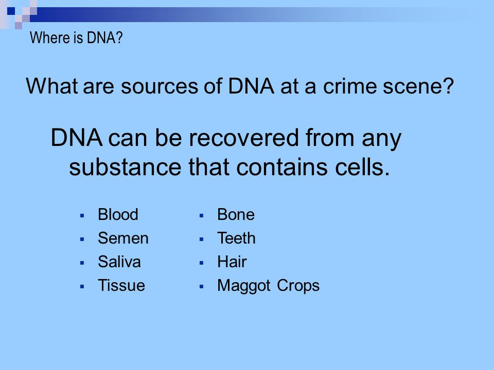 DNA can be recovered from any substance that contains cells.