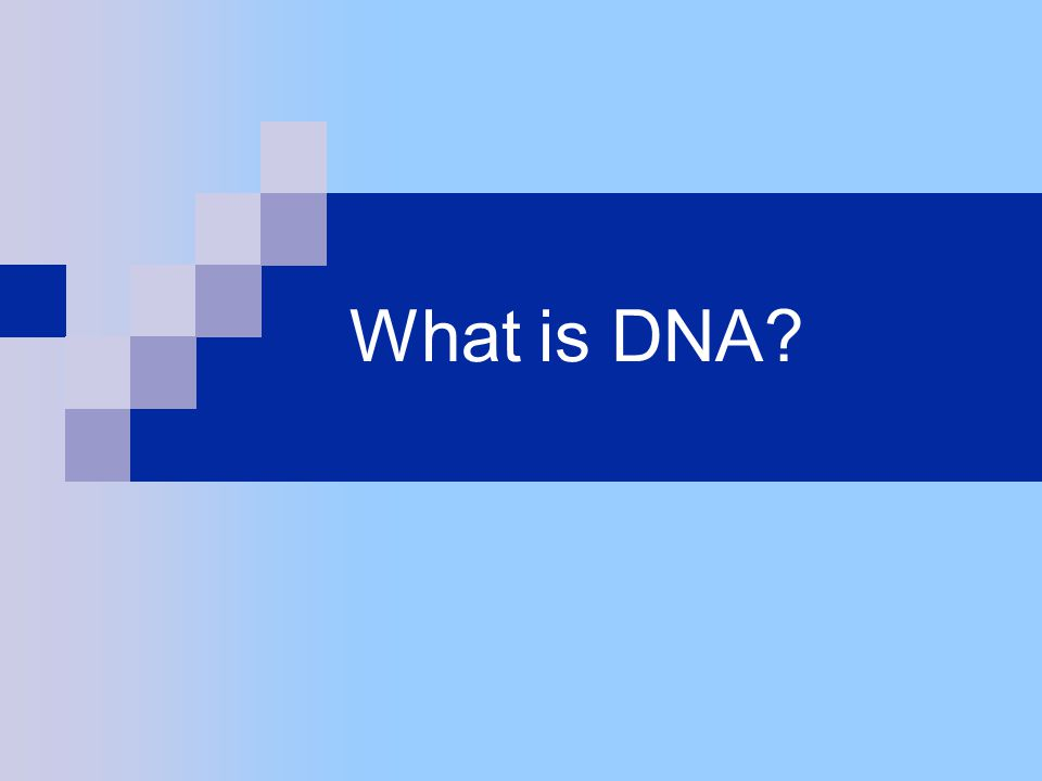 What is DNA