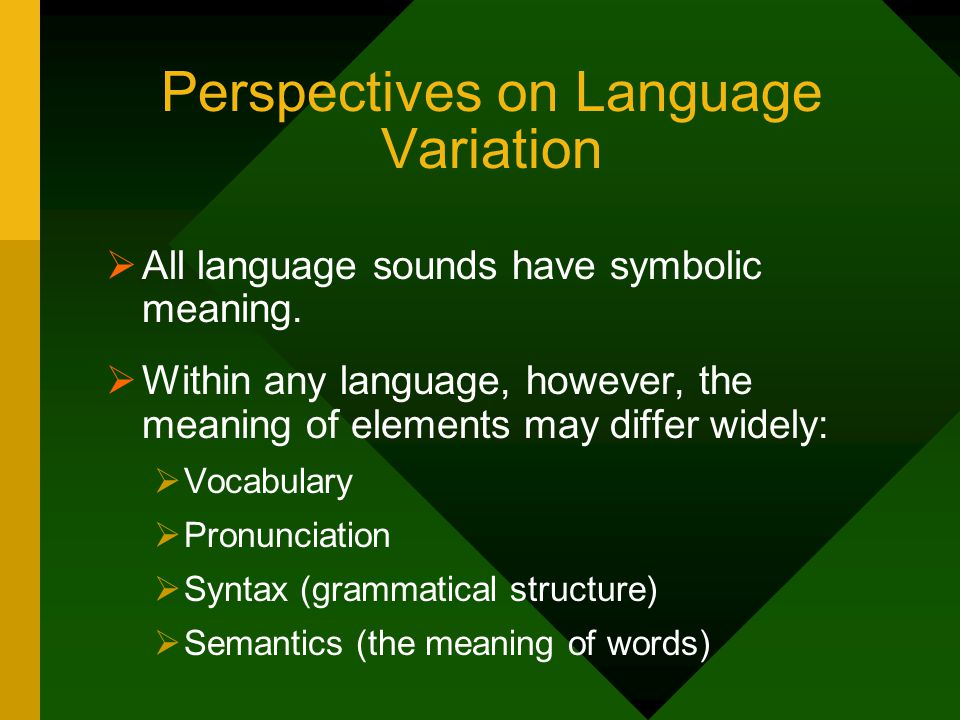 Perspectives on Language Variation