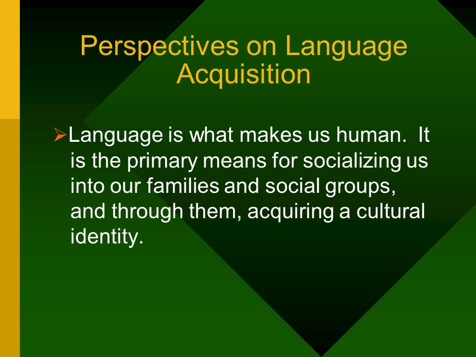 Perspectives on Language Acquisition