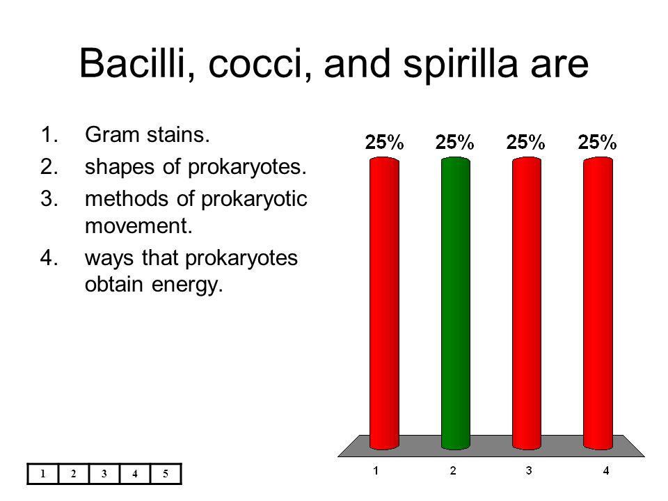 Bacilli, cocci, and spirilla are