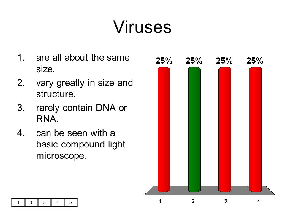 Viruses are all about the same size.
