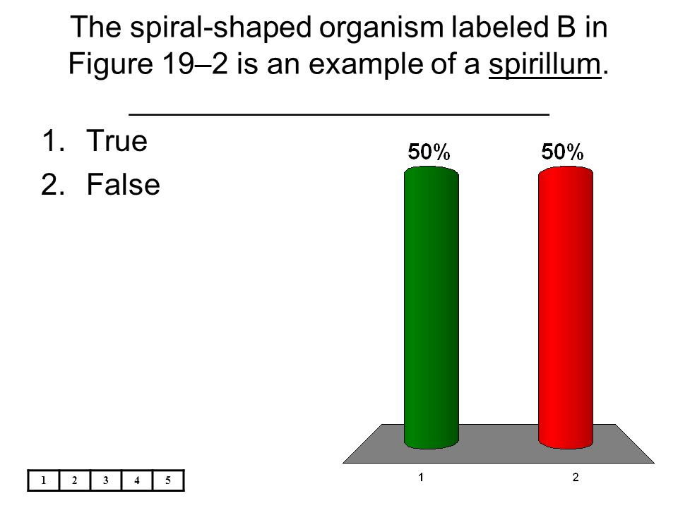 The spiral-shaped organism labeled B in Figure 19–2 is an example of a spirillum. _________________________