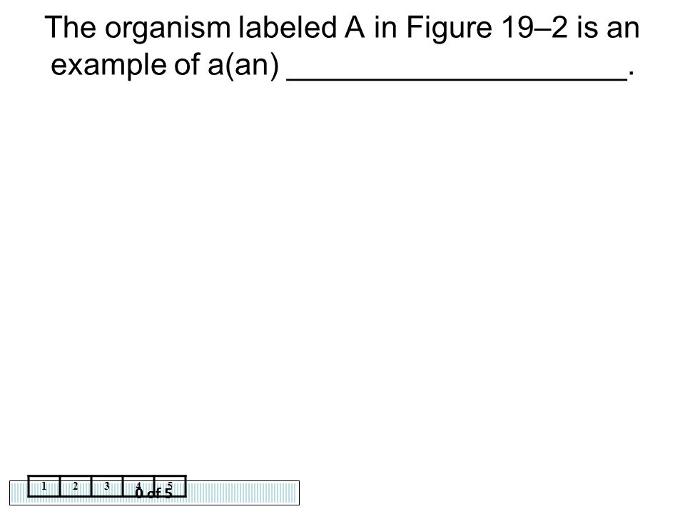 The organism labeled A in Figure 19–2 is an example of a(an) ____________________.