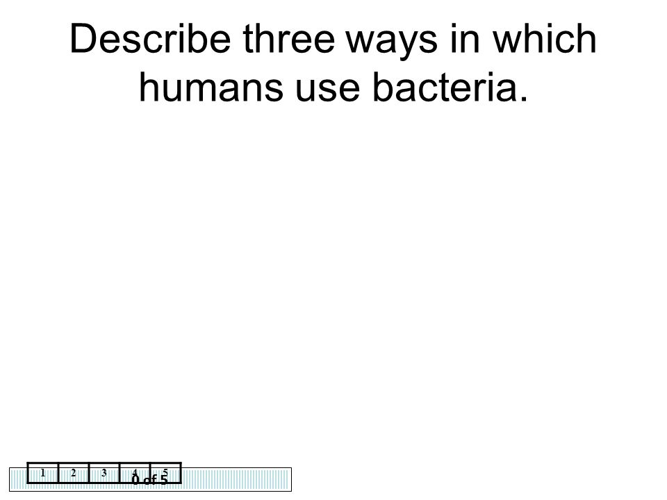 Describe three ways in which humans use bacteria.