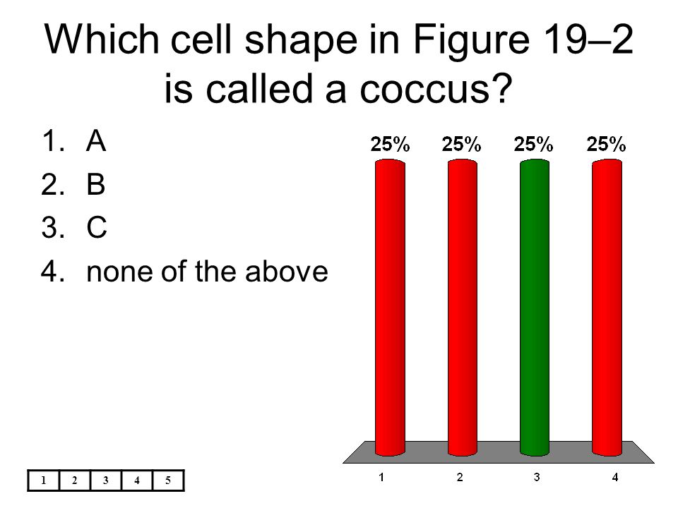 Which cell shape in Figure 19–2 is called a coccus