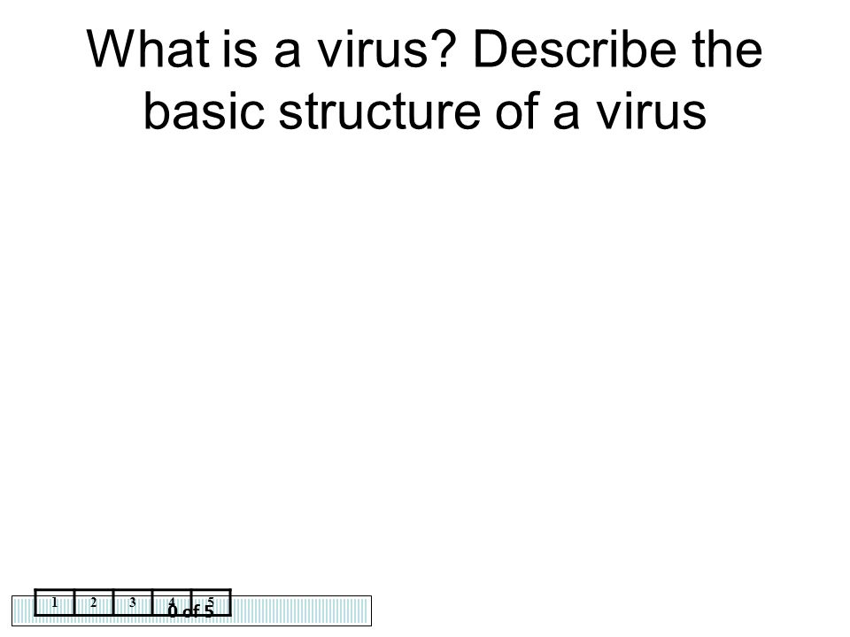 What is a virus Describe the basic structure of a virus