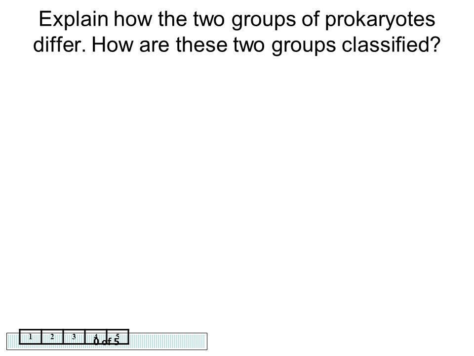 Explain how the two groups of prokaryotes differ