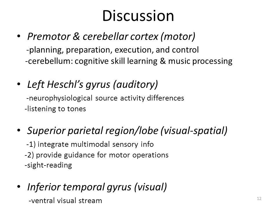 Discussion Premotor & cerebellar cortex (motor)