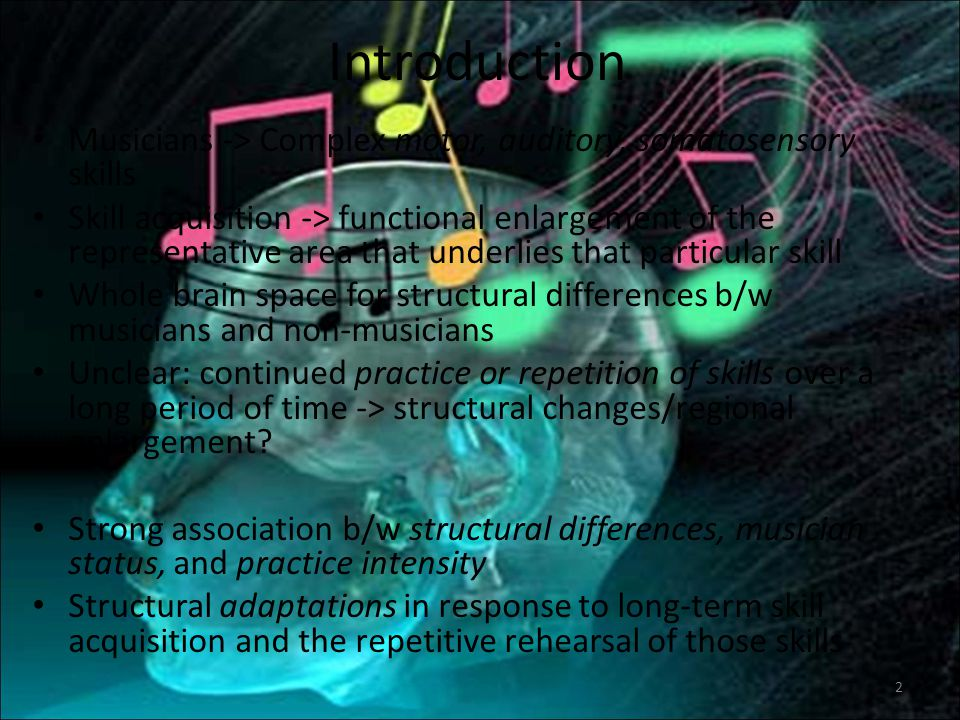 Introduction Musicians -> Complex motor, auditory, somatosensory skills.