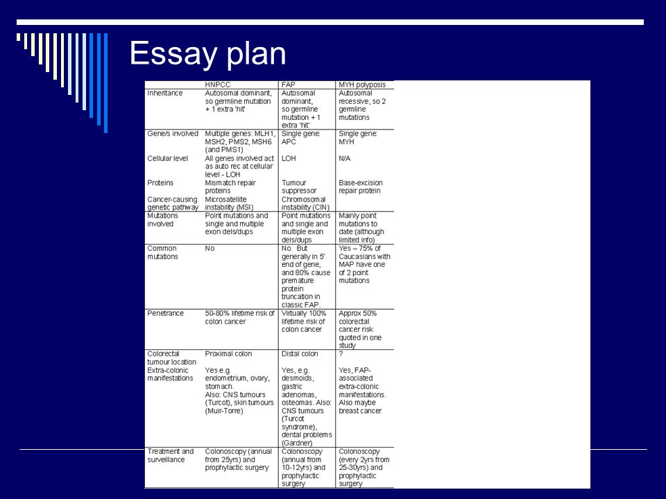 ut plan ii application essay