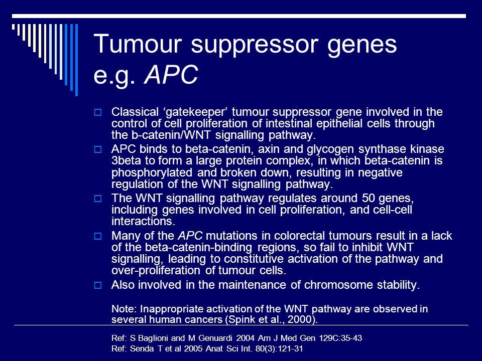 Tumour suppressor genes e.g. APC