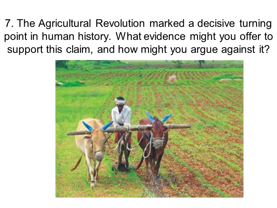 7. The Agricultural Revolution marked a decisive turning point in human history.