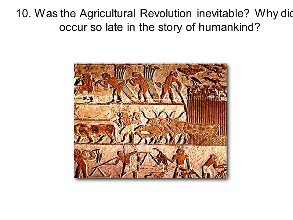 10. Was the Agricultural Revolution inevitable