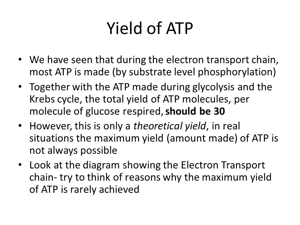 Yield of ATP We have seen that during the electron transport chain, most ATP is made (by substrate level phosphorylation)