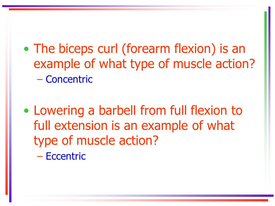 The biceps curl (forearm flexion) is an example of what type of muscle action