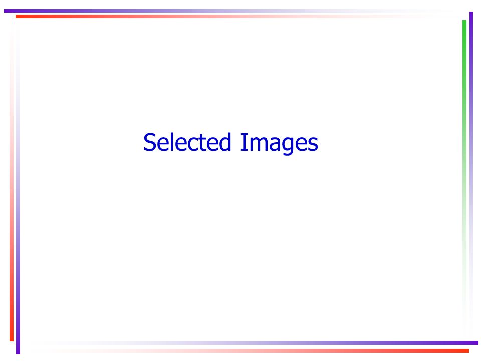 Selected Images