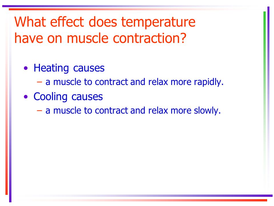 What effect does temperature have on muscle contraction