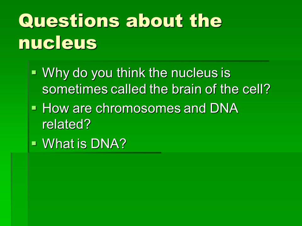 Questions about the nucleus