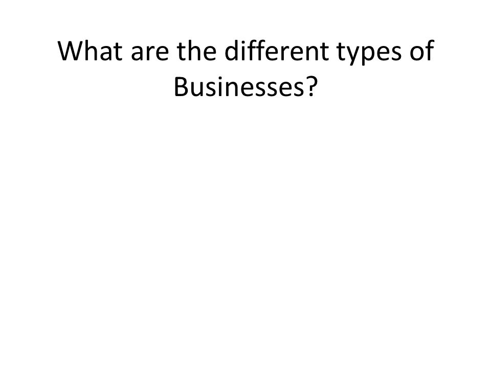 What are the different types of Businesses
