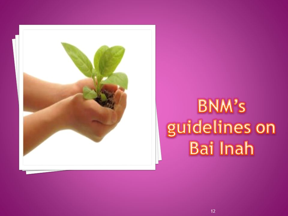 BNM's guidelines on Bai Inah