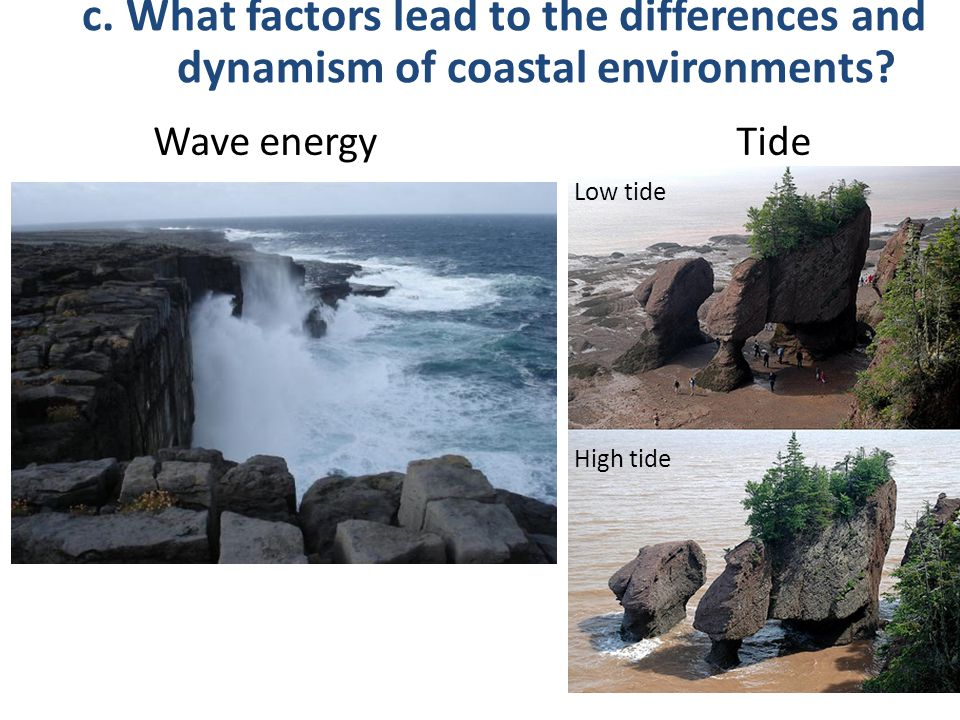 c. What factors lead to the differences and dynamism of coastal environments