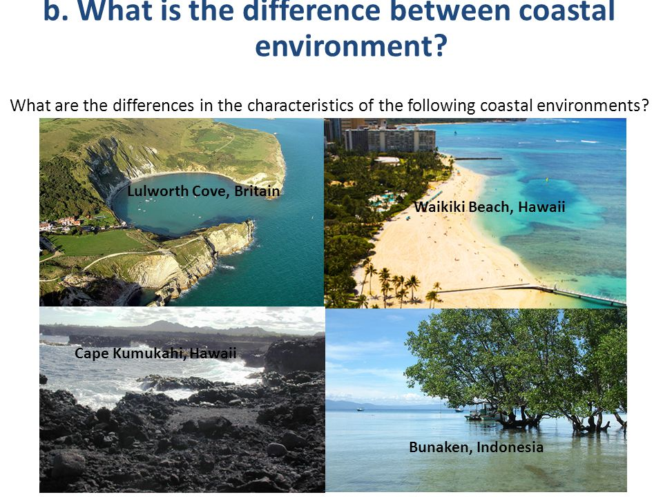 b. What is the difference between coastal environment