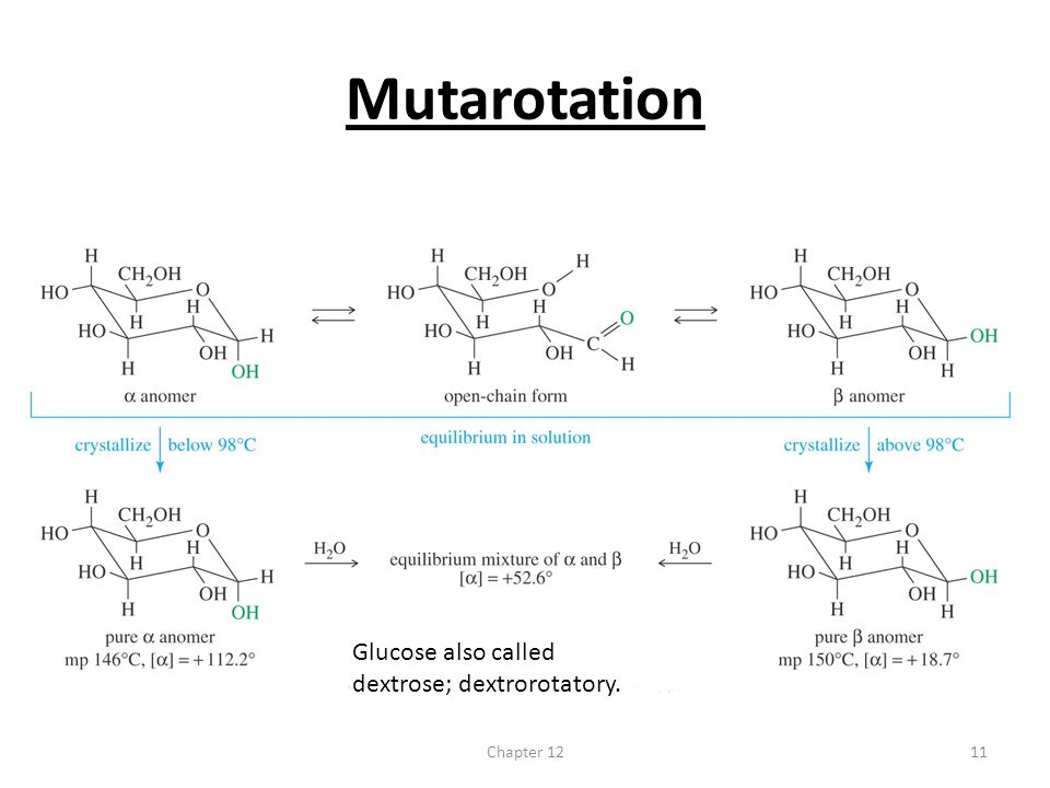 Mutarotation Glucose also called dextrose; dextrorotatory. Chapter 12