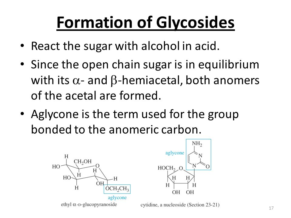 Formation of Glycosides