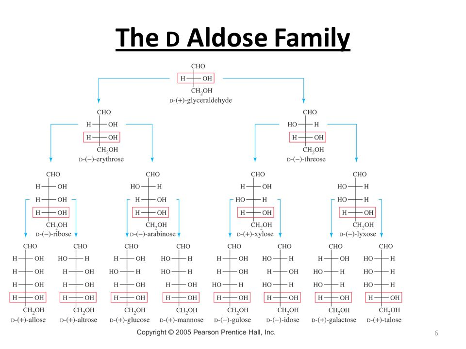 The D Aldose Family Chapter 23
