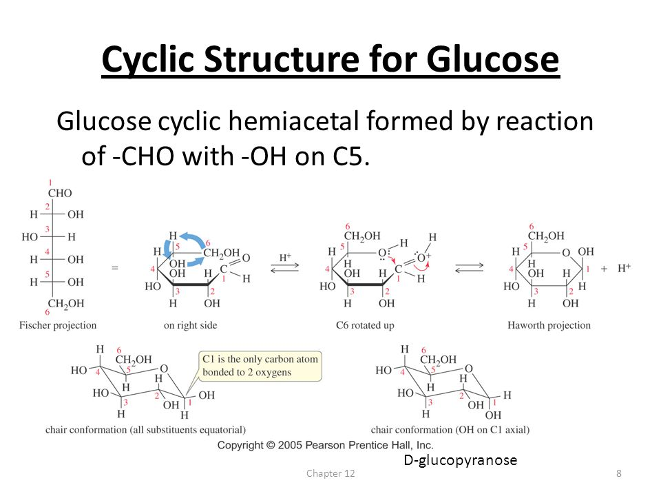 Cyclic Structure for Glucose
