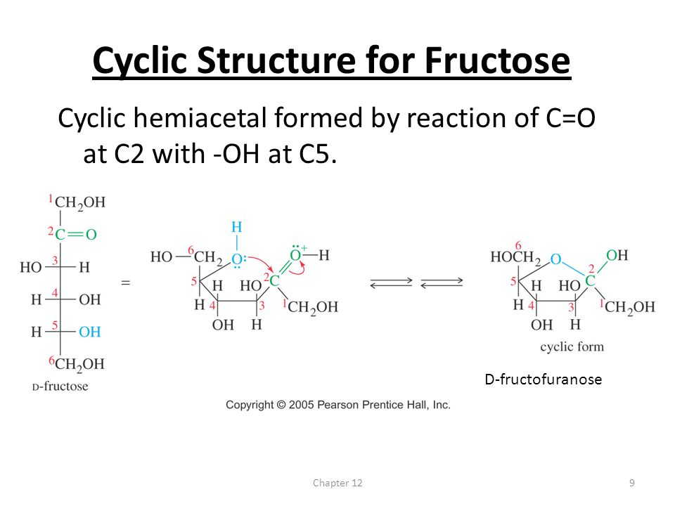 Cyclic Structure for Fructose