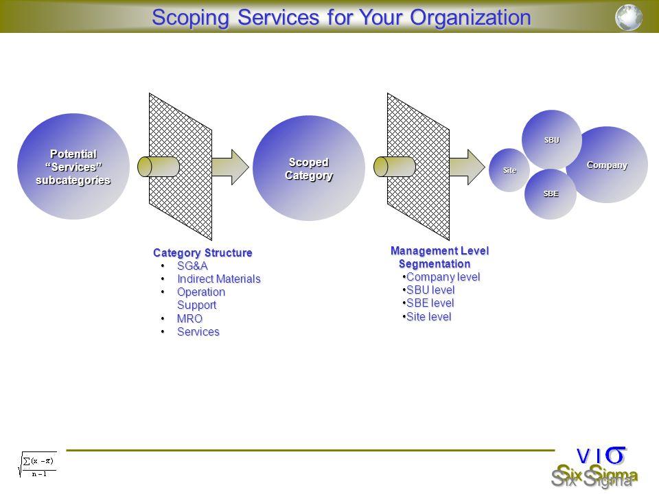Potential Services subcategories Management Level Segmentation