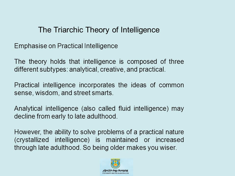 The Triarchic Theory of Intelligence