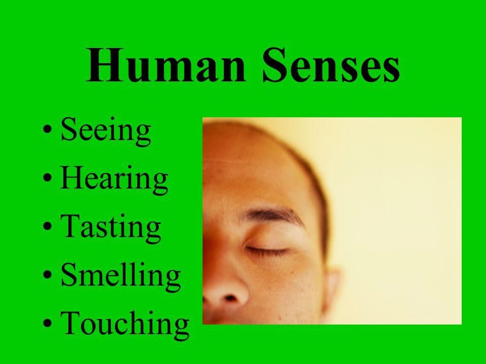 Human Senses Seeing Hearing Tasting Smelling Touching