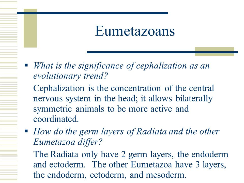 Eumetazoans What is the significance of cephalization as an evolutionary trend