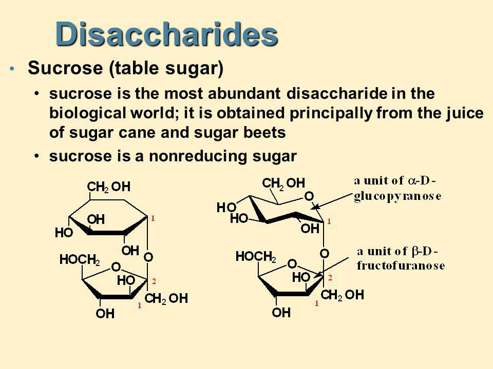 Disaccharides Sucrose (table sugar)
